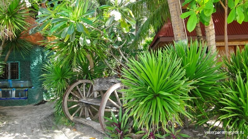 Алона бич, Филиппины