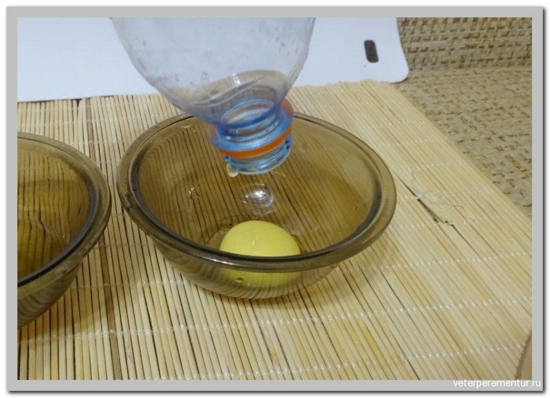 Как легко отделить желток от белка с помощью бутылки
