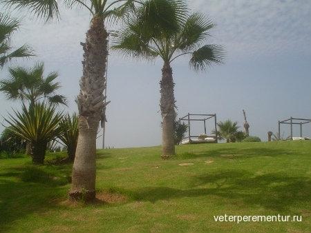 Риу Текида Бич, Марокко