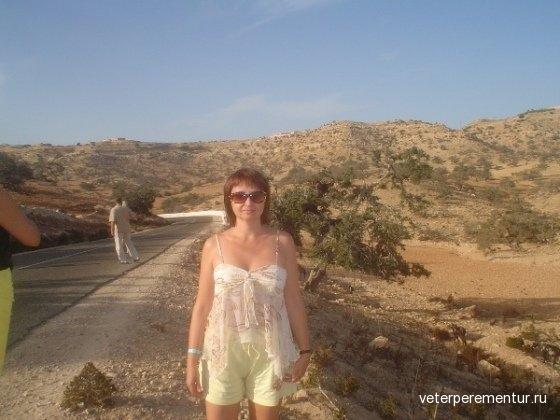 Марокко, козы на деревьях