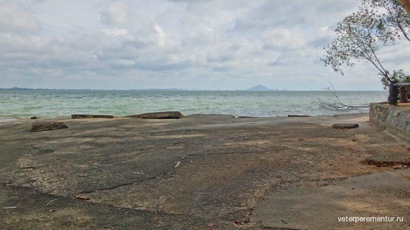 Shell Fossil Beach