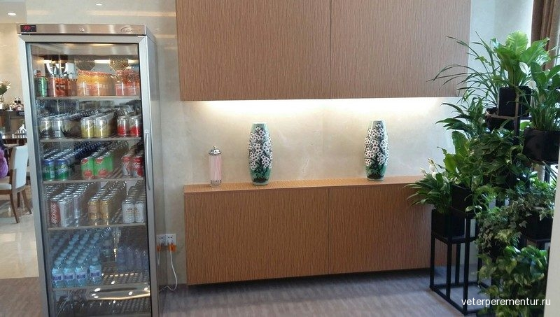 AIR CHINA FIRST AND BUSINESS CLASS LOUNGE