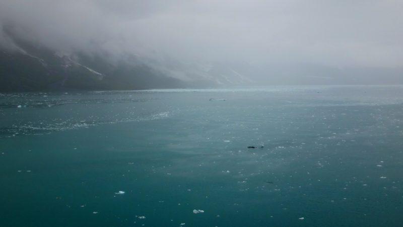 Круиз с Celebrity Millennium на Аляску