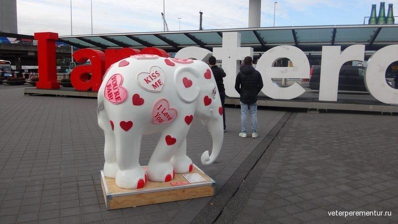 Аэропорт Амстердама
