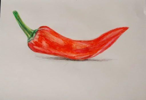Рисунок красный перец
